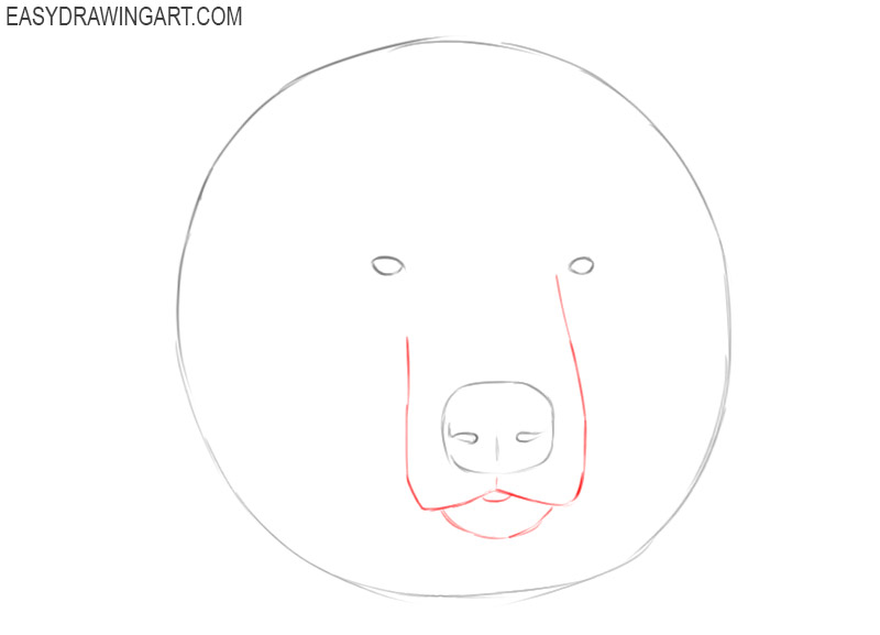 how to draw a grizzly bear head