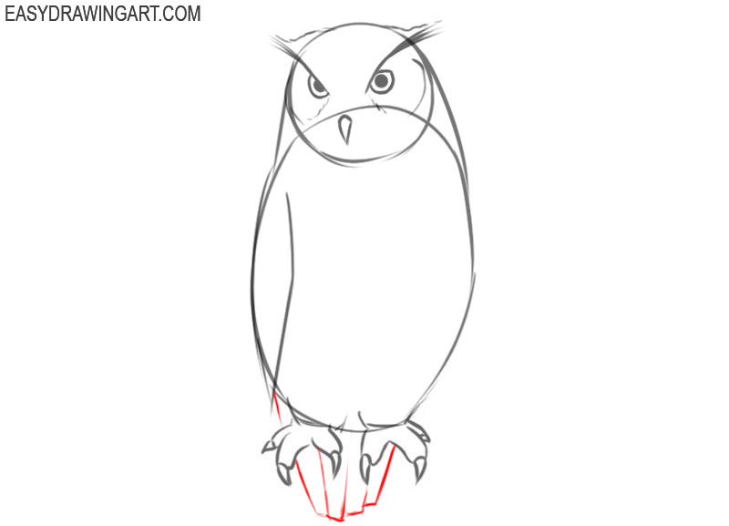 how to draw an owl colored pencils