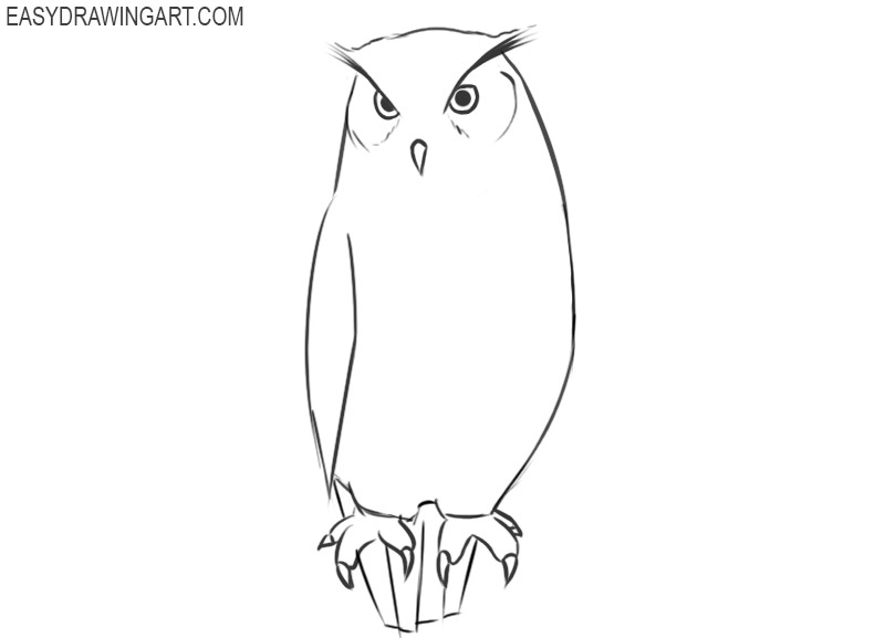 how to draw an owl drawings
