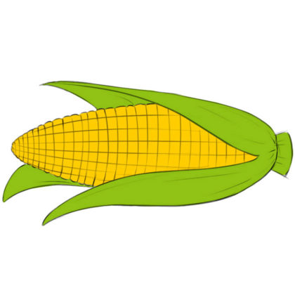 How to draw a corn