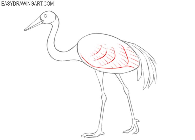 crane bird drawing step by step