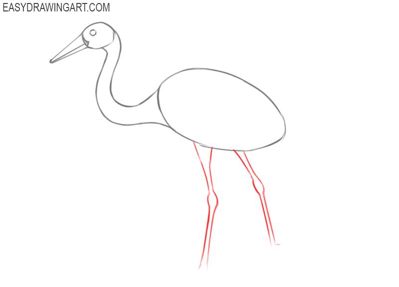 crane bird drawing