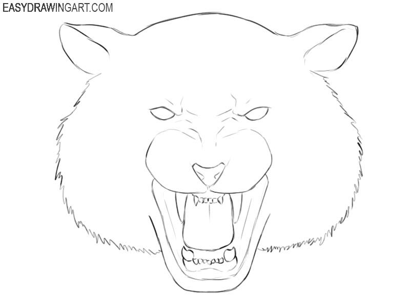 cute tiger head drawing