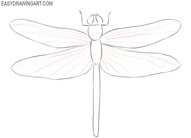 dragonfly drawing simple