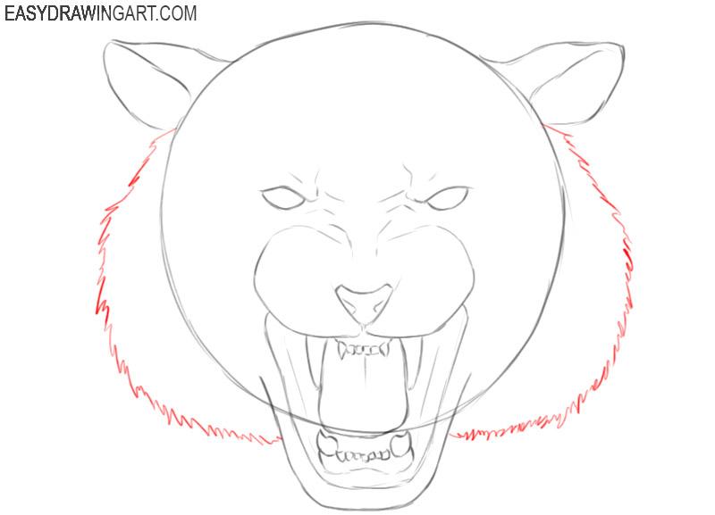 drawing a tiger head