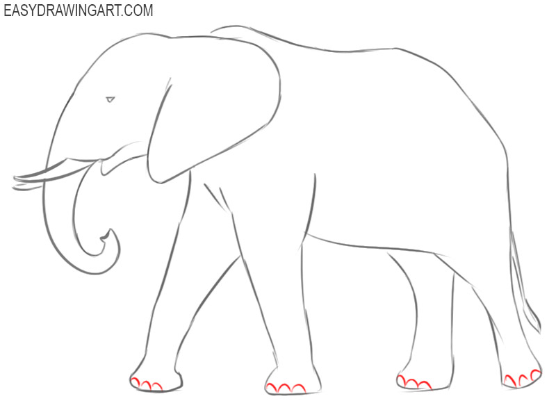 elephant drawing cute