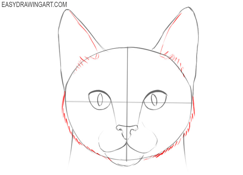how to draw a basic cat face