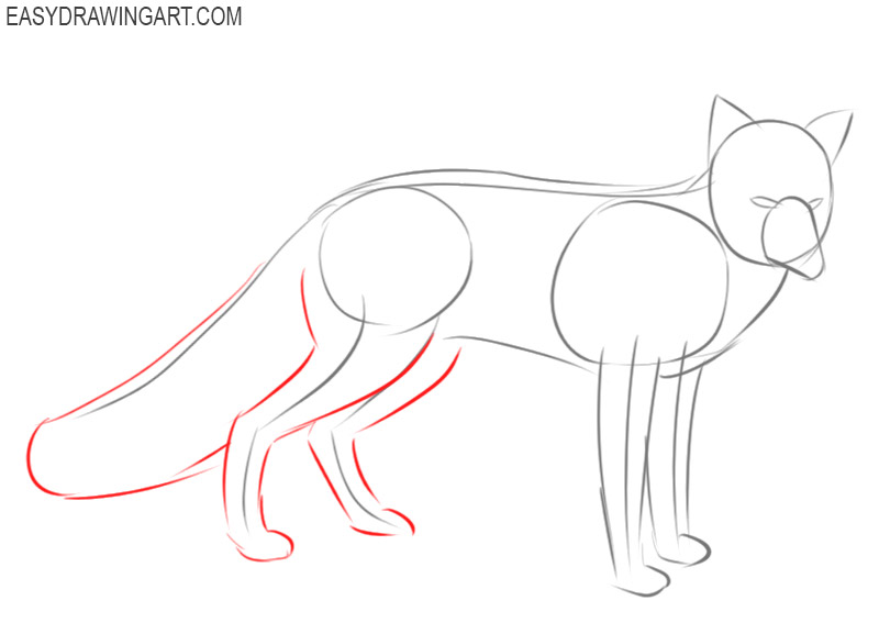 how to draw a basic fox