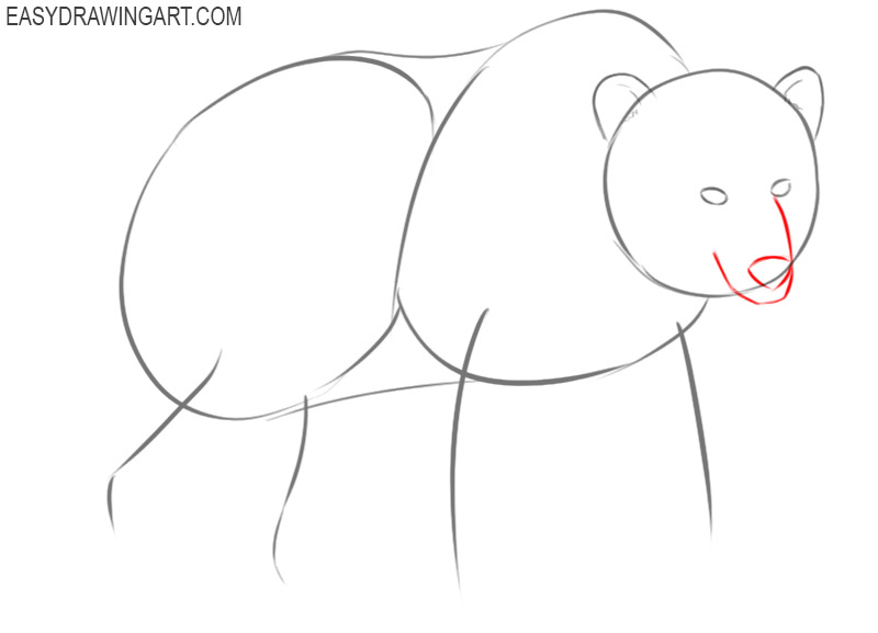 how to draw a bear body step by step