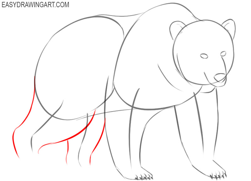 how to draw a bear draw so cute