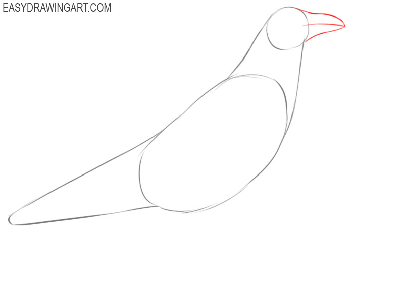 how to draw a big raven