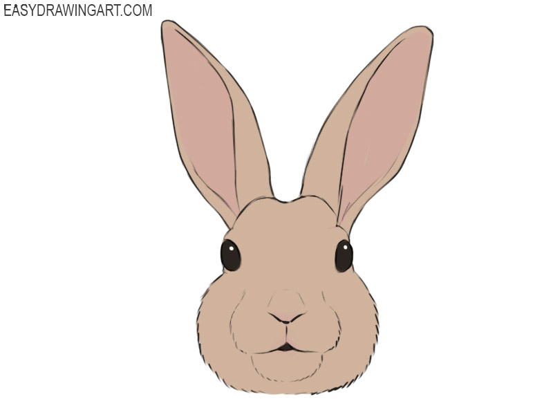 How To Draw A Bunny Face Easy Drawing Art