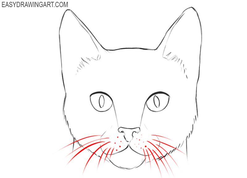 how to draw a cartoon cat face easy
