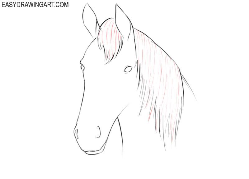 how to draw a cartoon horse head easy