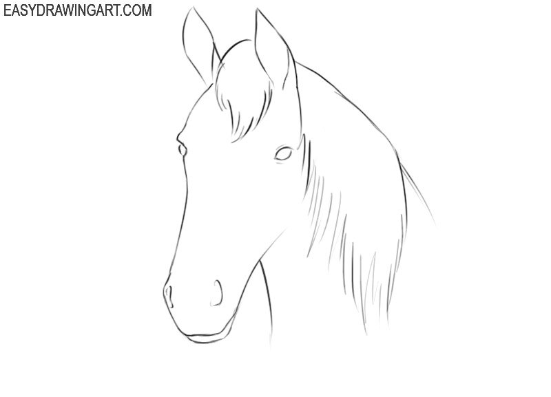 how to draw a cartoon horse head step by step