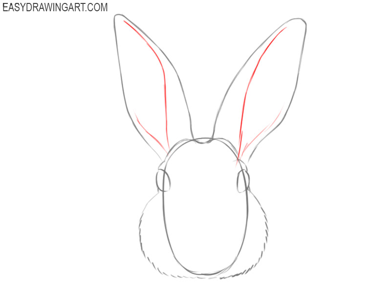 how to draw a cartoon rabbit face