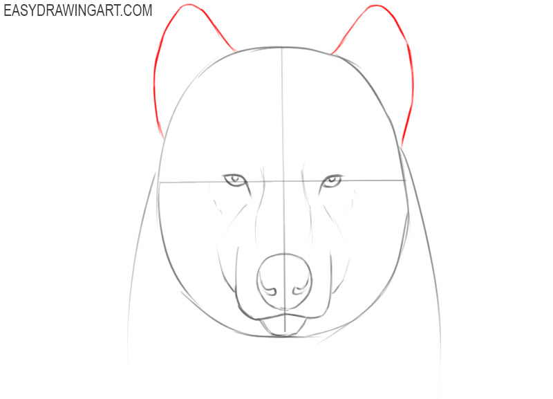 how to draw a cartoon wolf face step by step