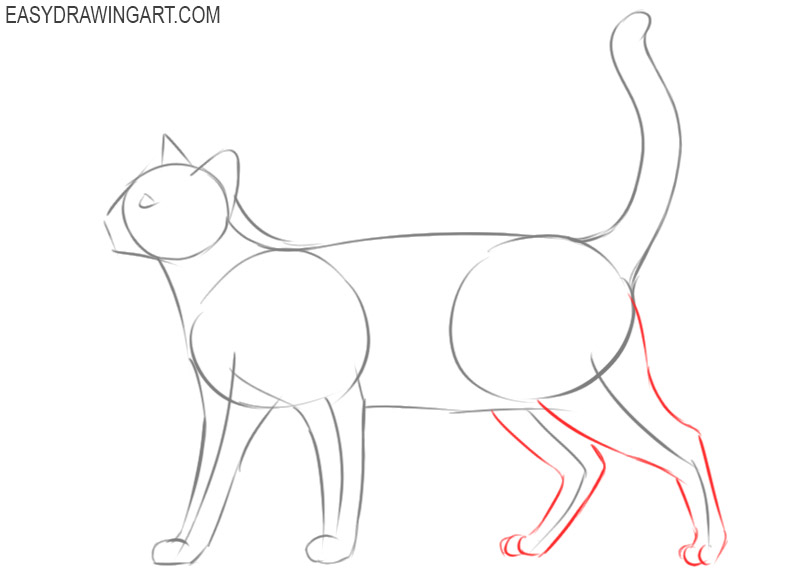how to draw a cat cartoon step by step