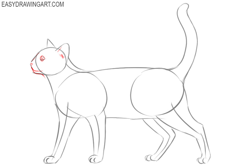 how to draw a cat draw so cute