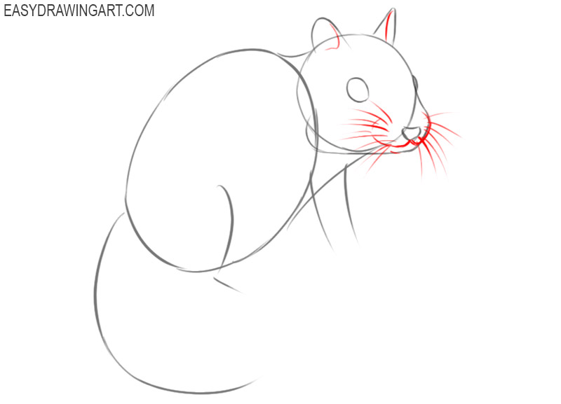 how to draw a chipmunk step by step