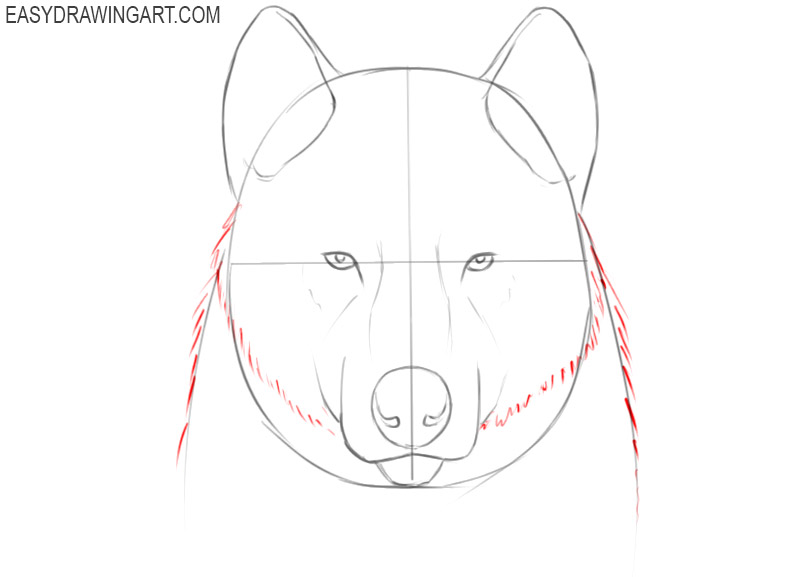 how to draw a cool wolf face