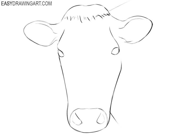 how to draw a cow face step by step