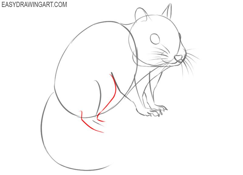 how to draw a cute cartoon chipmunk