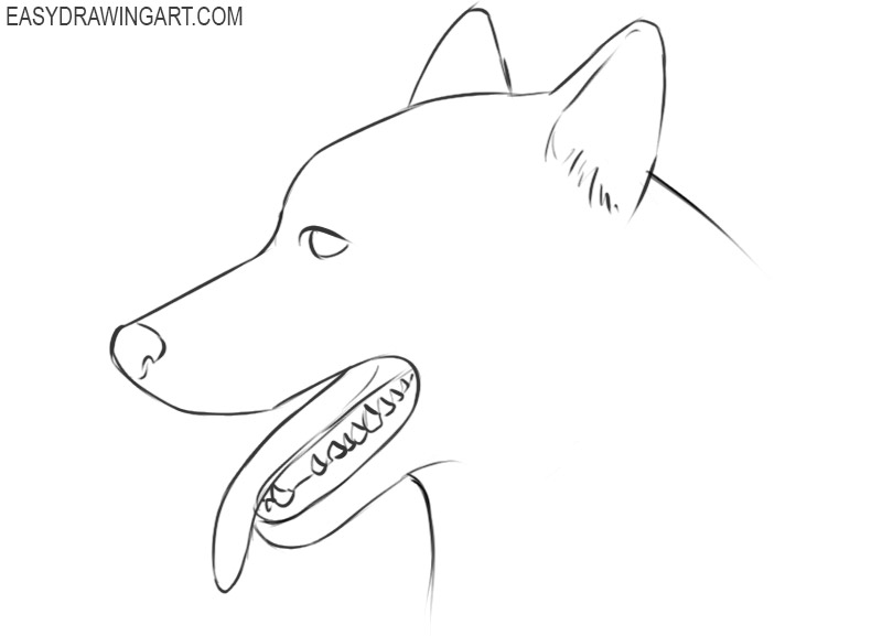 how to draw a cute cartoon dog face