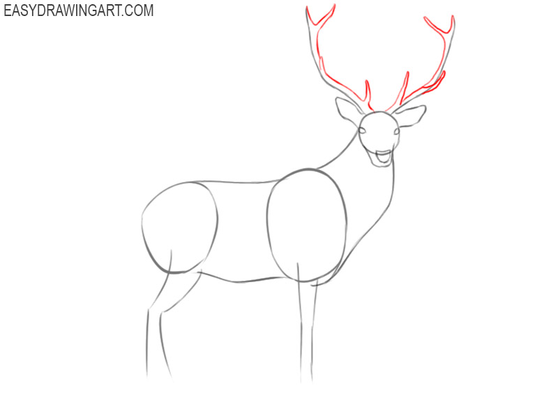how to draw a cute deer step by step