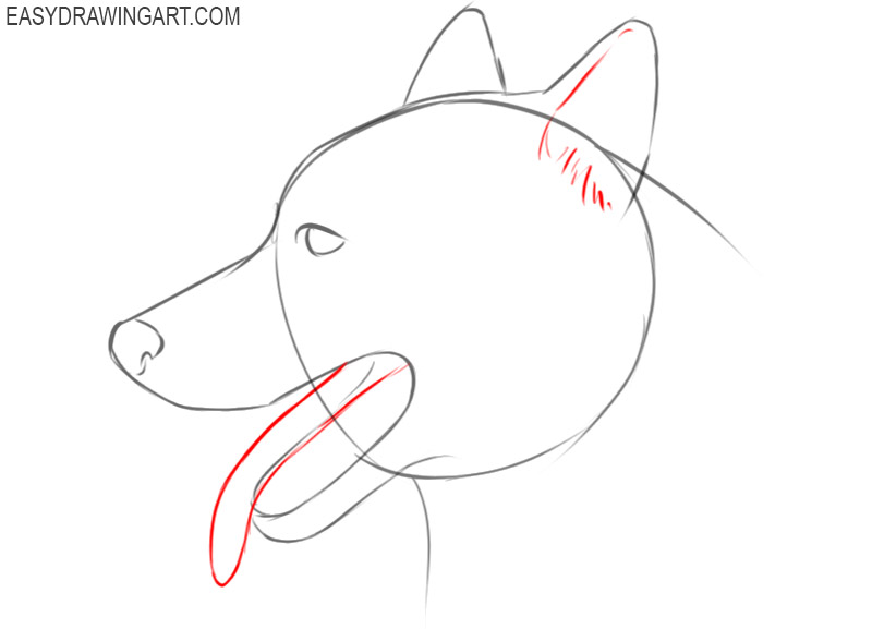 how to draw a cute dog face step by step