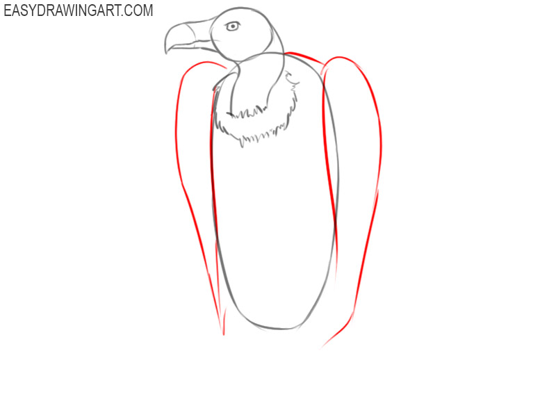 how to draw a cute vulture
