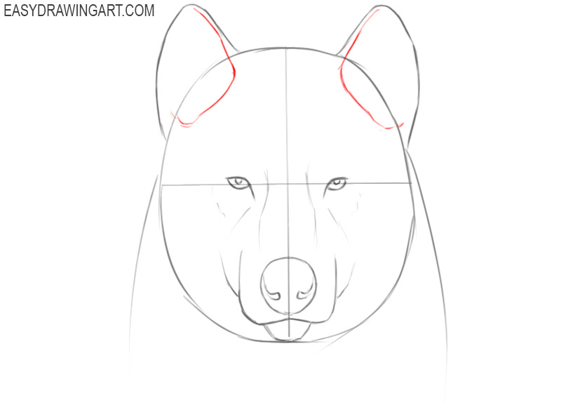 how to draw a cute wolf face