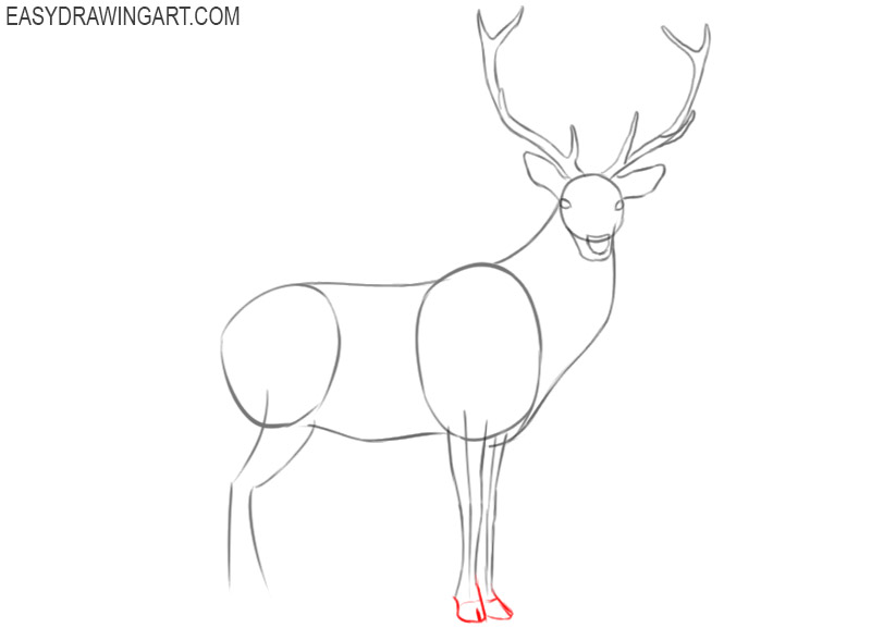 how to draw a deer easy step by step