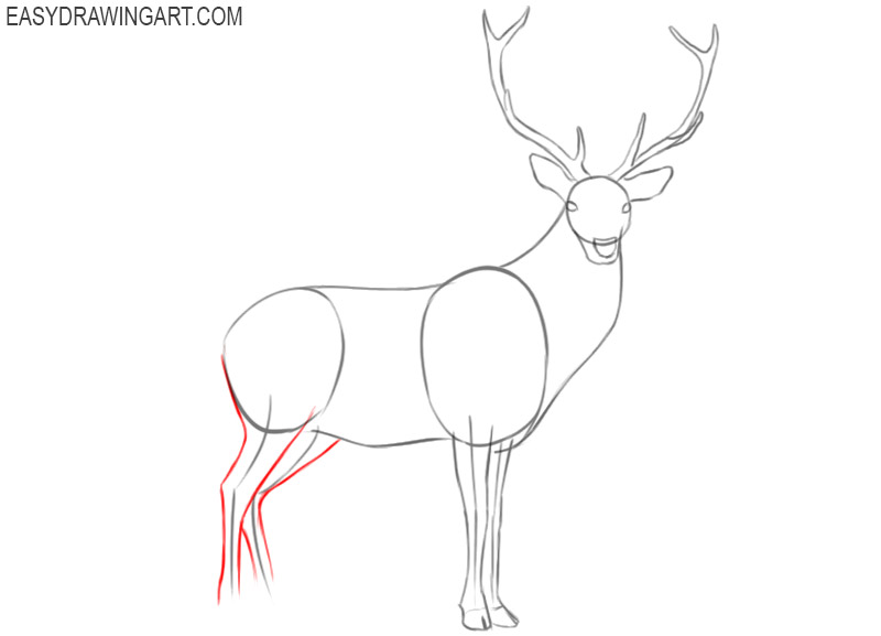how to draw a deer in steps
