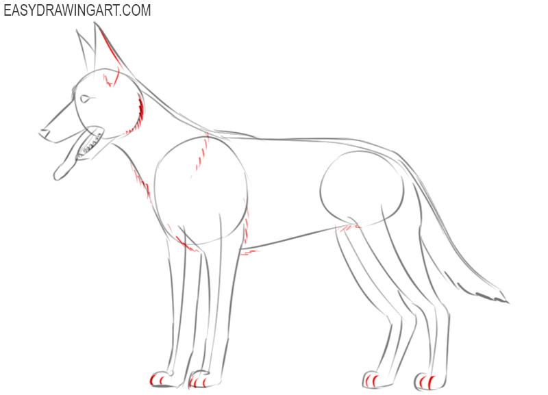 how to draw a dog easy step by step