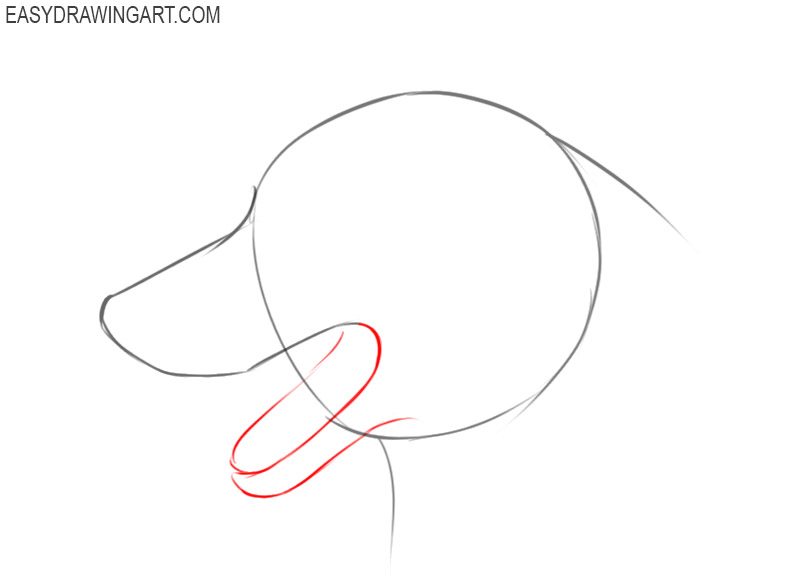how to draw a dog face simple