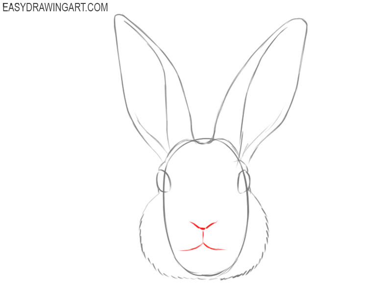 how to draw a face of a bunny