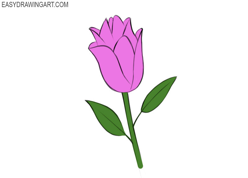 How To Draw A Flower Easy Drawing Art