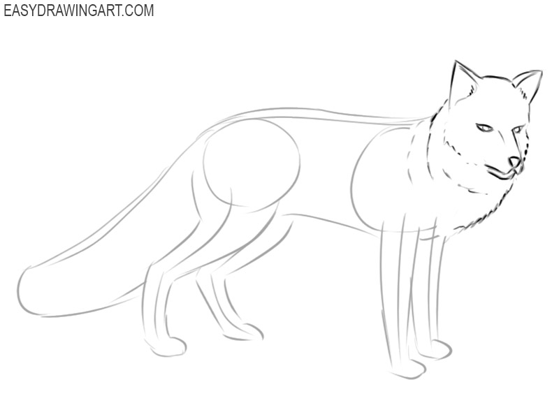how to draw a fox easy cute