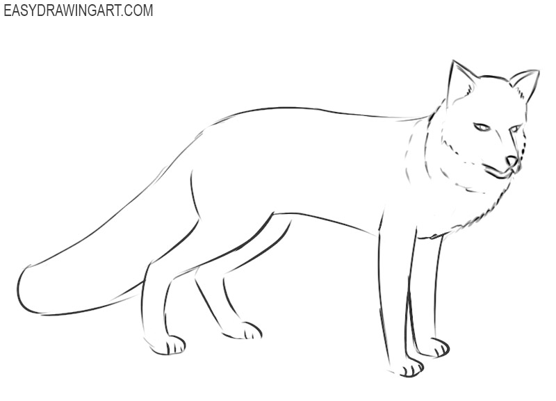how to draw a fox easy steps