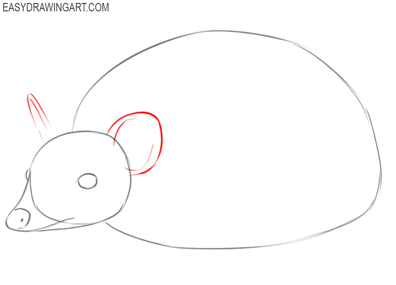 how to draw a hedgehog step by step