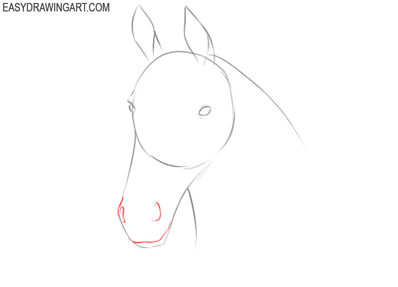 how to draw a horse head profile