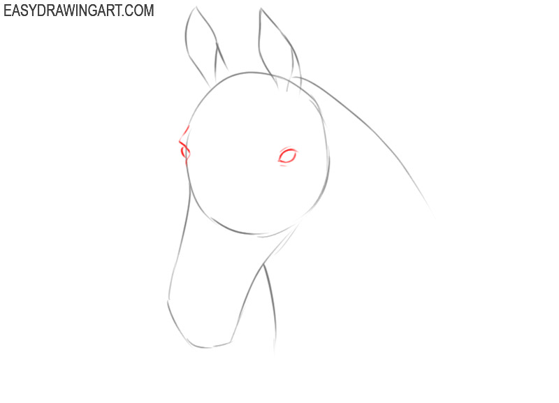 how to draw a horse head simple