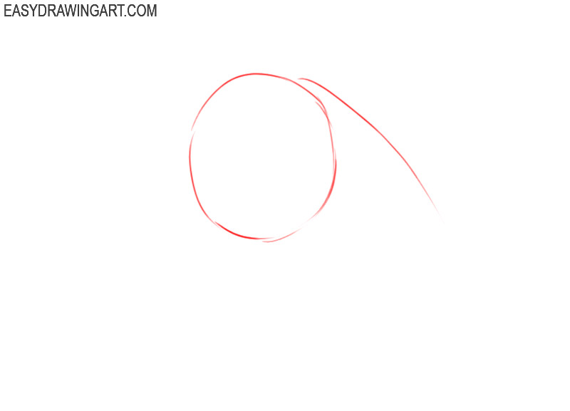 how to draw a horse head step by step