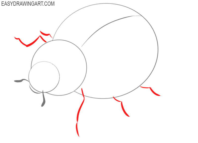 how to draw a ladybug easy drawing