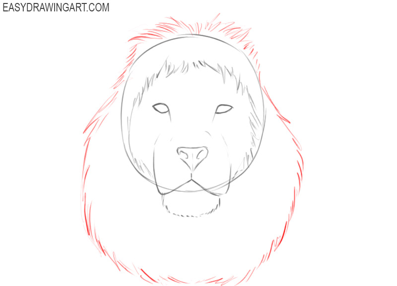 how to draw a lion head easy step by step