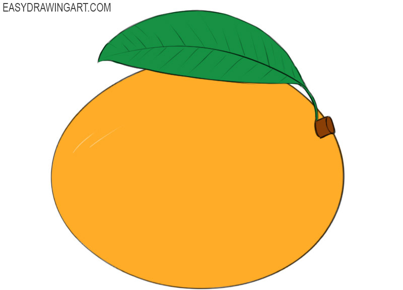 How To Draw A Mango Easy Drawing Art