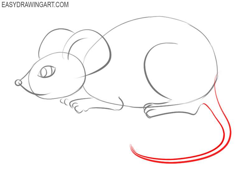 How to draw a mouse easy step by step