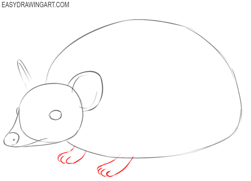 how to draw a picture of a hedgehog