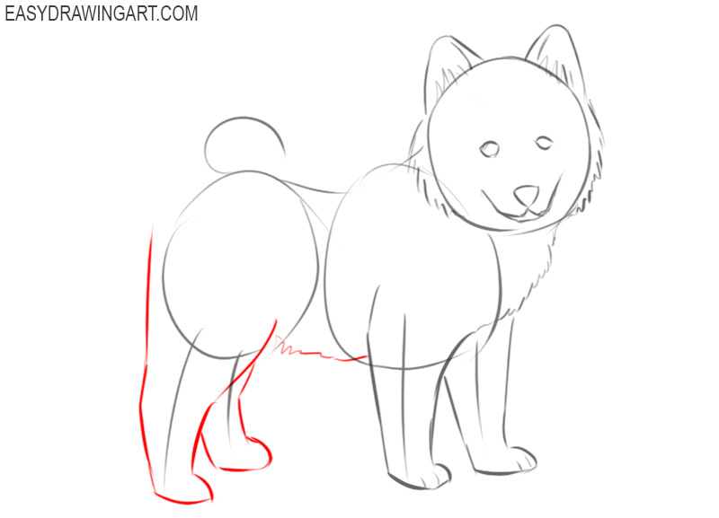 how to draw a puppy dog step by step
